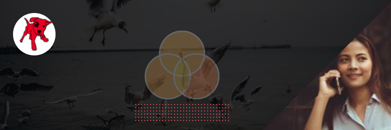 White Dotted Birds Overlay Liberation Day Twitter Header (1)